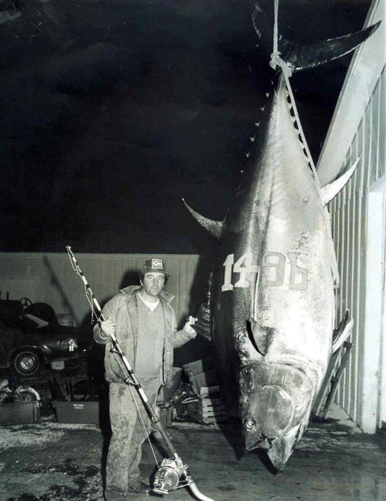 Biggest Atlantic Blue Fin Tuna